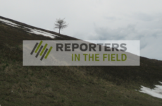 reporters in the field